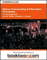 Basics of Accounting and  Information ProcessingThe Accounting Cycle