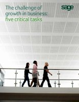the challenge of growth in business  five critical tasks