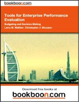 Tools for Enterprise Performance Evaluation Budgeting and Decision Making