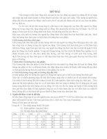 Bài tập lớn môn Kinh tế lượng phân tích về kết quả ước lượng đa cộng tuyến