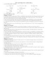 Đề cương ôn tập học kỳ 1 môn Hóa 11