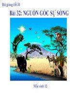 bài giảng sinh học 12 bài 32 nguồn gốc sự sống