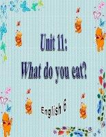 bài giảng tiếng anh 6 unit 11 what do you eat