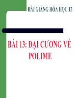 bài giảng hóa học 12 bài 13 đại cương về polime