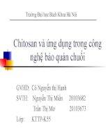 Chitosan và ứng dụng trong công nghệ bảo quản chuối