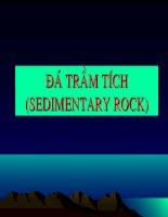 bài giảng địa chất đại cương chương 10 đá trầm tích(sedimentary rock)
