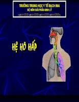 Bài 5: Giải Phẫu Hệ Hô Hấp