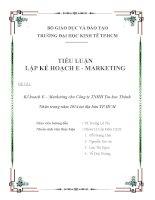 TIỂU LUẬN LẬP KẾ HOẠCH E  MARKETING Kế hoạch E – Marketing cho Công ty TNHH Tin học Thành Nhân trong năm 2014 tại địa bàn TP.HCM