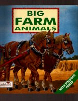 big farm animals