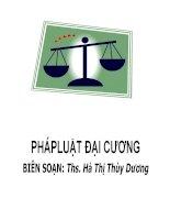 Bài giảng Pháp Luật Đại Cương Đại học Quốc Gia Hồ Chí Minh