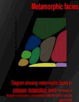 Bài giảng Metamorphic facies  powerpoint