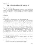 Chương 11 sự điều hòa biểu hiện kiểu gene (bộ môn di truyền học)