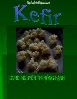 Đề tài tổng quan về quy trình sản xuất kefir