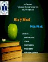 hóa lý silicat đề tài: đất sét