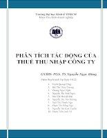 Tiểu luận phân tích chính sách thuế PHÂN TÍCH TÁC ĐỘNG CỦA  THUẾ THU NHẬP CÔNG TY