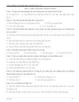 trắc nghiệm và bài tập thực hành tin học 12