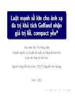 luật mạnh số lớn cho ánh xạ đa trị khả tích gelfand nhận giá trị lồi, compact yếu( sao)