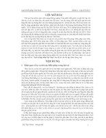 Đề tài lịch sử lập hiến việt nam (luật hiến pháp việt nam)