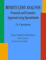 benefit-cost analysis financial and economic appraisal using spreadsheets ch. 1 introduction