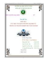 HIỆU QUẢ  CỦA VIỆC ỨNG DỤNG THƯƠNG MẠI ĐIỆN TỬ  TRONG CÁC DOANH NGHIỆP VIỆT NAM NĂM 2010