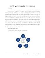 Hướng dẫn viết tiểu luận