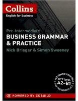 Business grammar and practice A2 B1 Collins