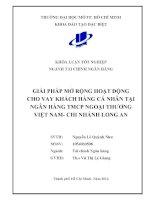 Giải pháp mở rộng hoạt động cho vay khách hàng cá nhân tại ngân hàng TMCP ngoại thương Việt Nam Chi nhánh Long An