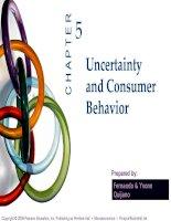 slide bài giảng kinh tế vi mô tiếng anh ch05 uncertainty & consumer