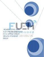 tiểu luận marketing - marmix iphone 4 thực trạng và giải pháp