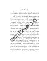 Đề tài nội dung một số qui định cơ bản của pháp luật về thi hành án dân sự