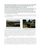 Một số kết quả nghiên cứu sự ảnh hưởng các yếu tố đất đắp và đất nền tự nhiên đến hệ số ổn định tổng thể của nền đường vùng đồng bằng sông cửu long