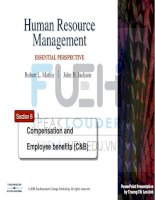 human resources management _ section 6-compensation and employee benefits