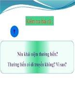 giáo án tham khảo bồi dưỡng sinh học lớp 9 bài thực hành quan sát thường biến (1)