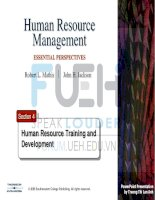 human resources management _ section 4-training and development