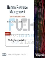 human resources management _ section 3-staffing