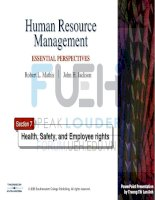 human resources management _ section 7-health safety and employee rights