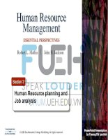 human resources management _ section 2-hr planning and job analysis
