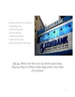 Phân tích báo cáo tài chính ngân hàng Thương Mại Cổ Phần Xuất nhập khẩu Việt Nam (Eximbank