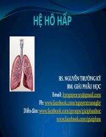 hệ hô hấp - bộ môn giải phẫu học đh y dược tphcm