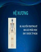 hệ xương- bộ môn giải phẫu học đh y dược tp hcm