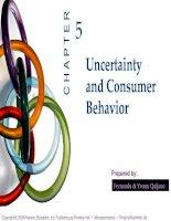bài giảng kinh tế vi mô tiếng anh ch05 uncertainty & consumer