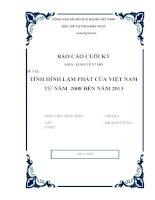 Báo cáo cuối kỳ: Tình hình lạm phát của Việt Nam từ năm 2008 đến nay