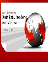 TIỂU LUẬN KINH TẾ ĐỐI NGOẠI Xuất khẩu lao động của Việt Nam
