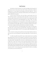 LUẬN VĂN THIẾT KẾ NHÀ MÁY SẢN XUẤT TINH BỘT KHOAI MÌ