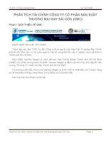 PHÂN TÍCH TÀI CHÍNH CÔNG TY CỔ PHẦN SẢN XUẤT THƯƠNG MẠI MAY SÀI GÒN (GMC)