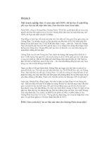 Bài tập luật hình sự Việt Nam