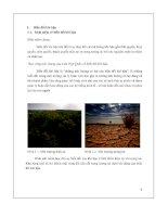 tiểu luận biến đổi khí hậu - luận văn, đồ án, đề tài tốt nghiệp