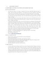 TIỂU LUẬN QUẢN TRỊ TÀI CHÍNH PHÂN TÍCH TÀI CHÍNH CÔNG TY CỔ PHẦN CONTAINER VIỆT NAM