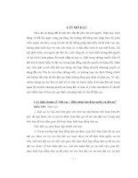 Tiểu luận bài tập nhóm dân sự 2