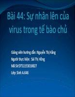 thuyết trình sinh học -chu trình nhân lên của virus trong tế bào chủ